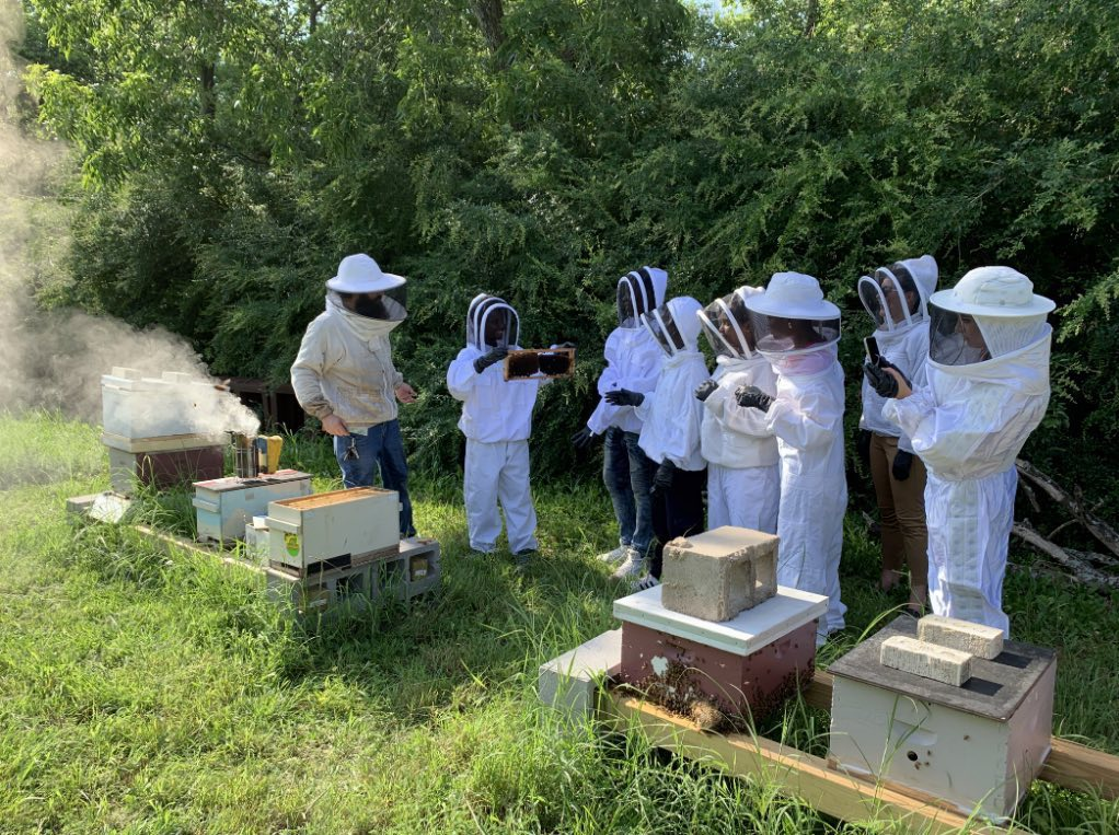 Interns learning from a local bee keeper